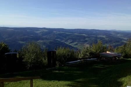 Waldkirch bei Freiburg mit Aussicht auf den Kandel