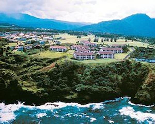 OCEANVIEW 3 or 4BR Princeville- The Cliffs Resort! - Princeville - Wohnung