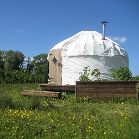 Beautiful Yurt in Dorset - Corfe Mullen - Tenda