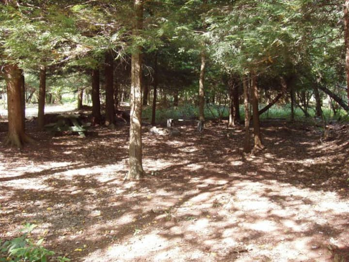 Campsite Group E