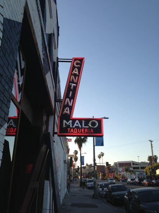 Photo of Malo