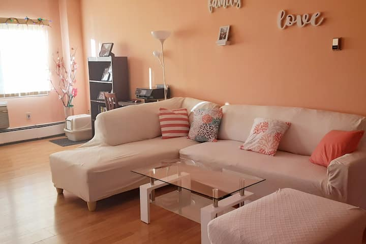 Renovated Spacious & Modern 1 Bed 1 Bath Apartment