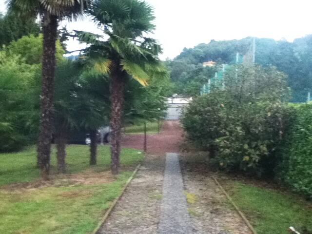 Green garden Lago d'Orta