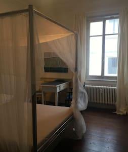 Schönes Zimmer mitten in der Altstadt von Tübingen - Tübingen