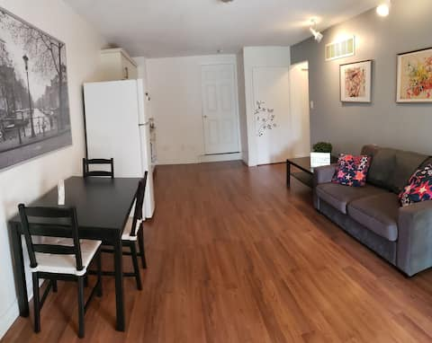 Lovely and cozy 1-bedroom Walk-In apartment with free parking on premises
