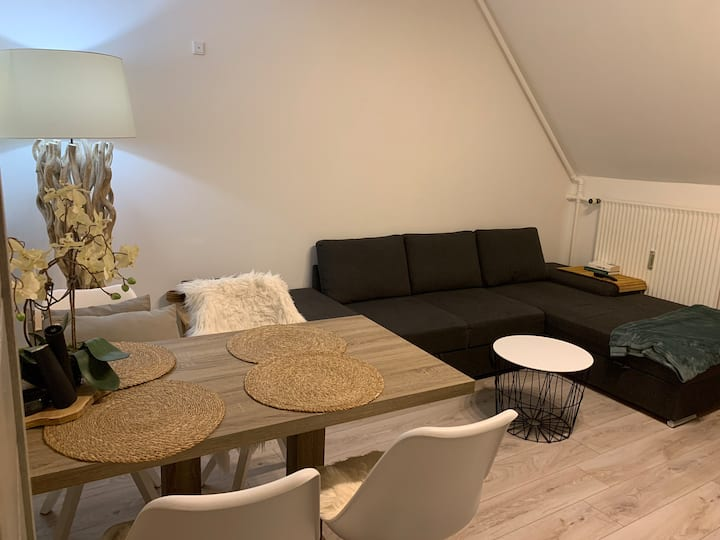 Cozy apartment 25 mins from Copenhagen City