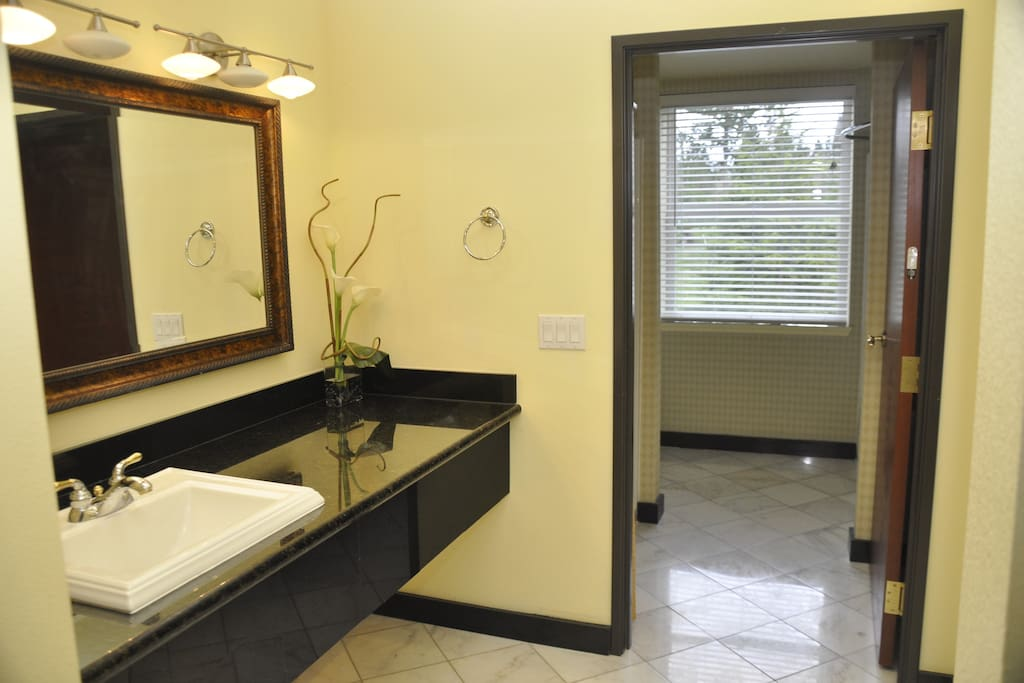 Bathroom with shower and tub, separate sink.