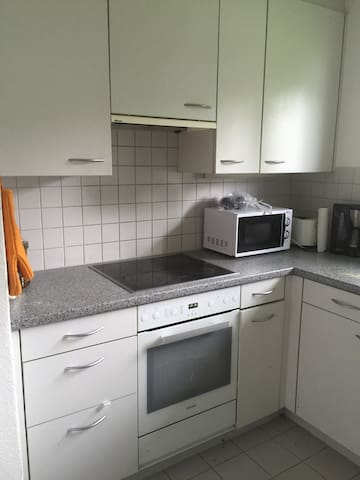 Double room 30mins from Zurich City Centre - Oberengstringen - Pis