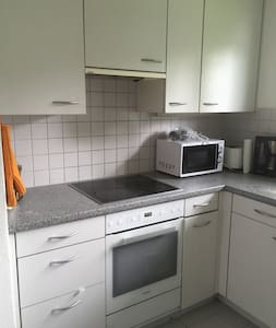 Double room 30mins from Zurich City Centre - Oberengstringen - 公寓