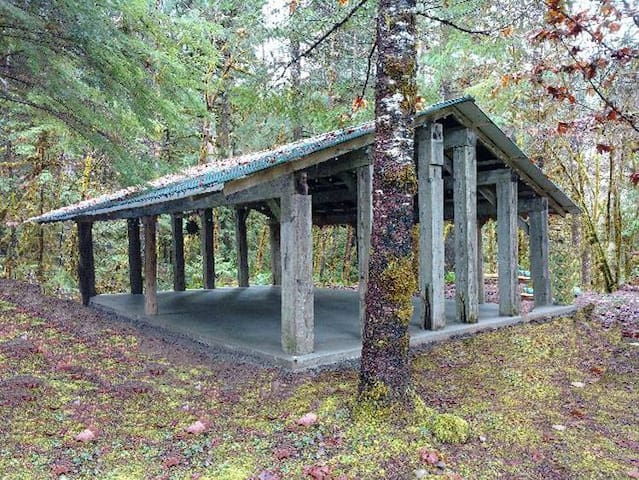 Open Air Long House with cement floor near Gray Creek and surrounded  by forest fauna and flora!