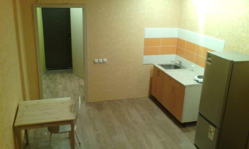 Мини-студия - Novosibirsk - Lejlighed