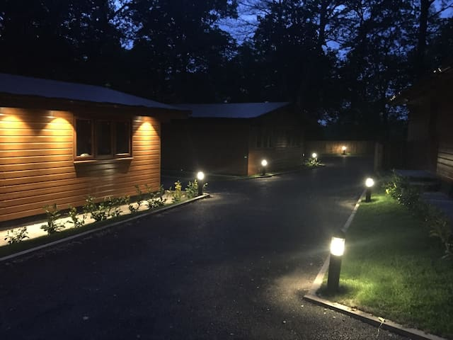 Elm Lodge @ Shellow Lane Lodges
