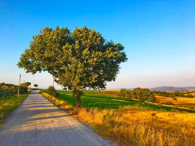 COUNTRY ROADS - La Casa fra i Due Laghi