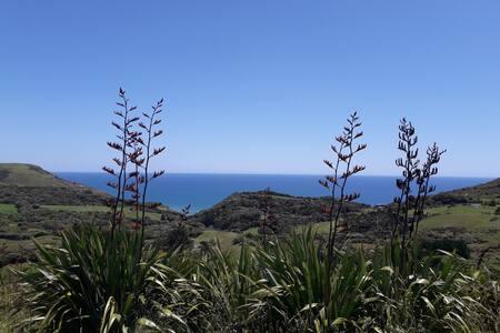 Muriwai Ocean Panorama