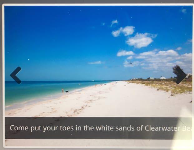 Breathtaking Beautiful Beach Condo!