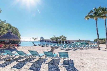 Modern Florida Keys Getaway - Slps 5 -  Ocean View