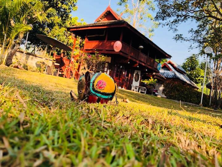 Chiang Mai Sunshine House 102