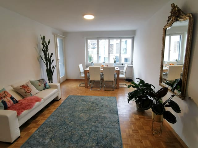 Nice room in the heart of Zurich near the lake