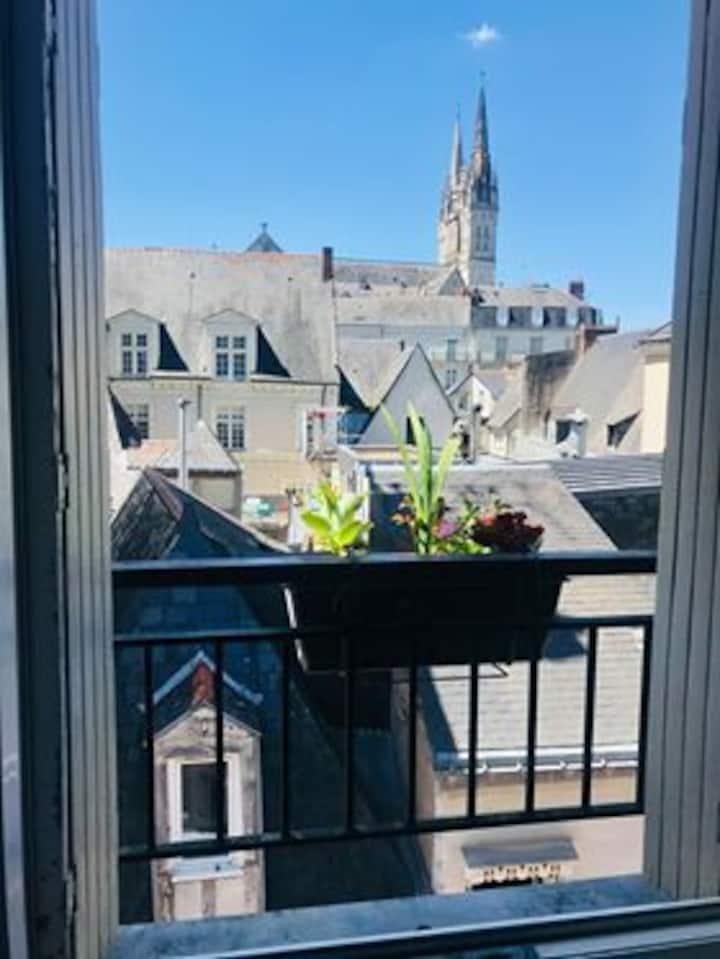 Logement entier plein centre à Angers avec vue