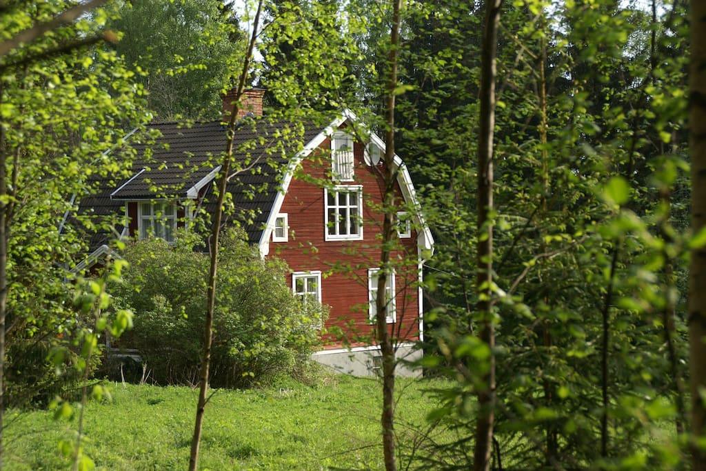 haus walden in der natur schwedens h user zur miete in ljusnarsberg v rebro l n schweden. Black Bedroom Furniture Sets. Home Design Ideas