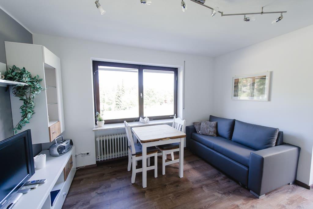 Wohnzimmer mit Schlafcouch (1,40 m)