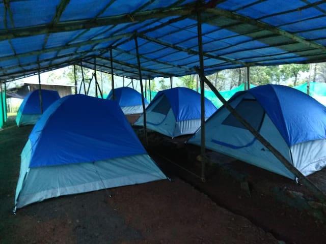 camp area