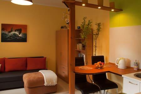 Apartament 2-4 osobowy - Leilighet