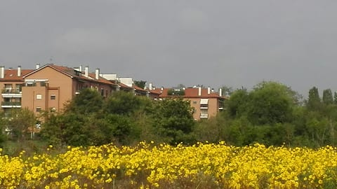 Bilocale zona San Siro