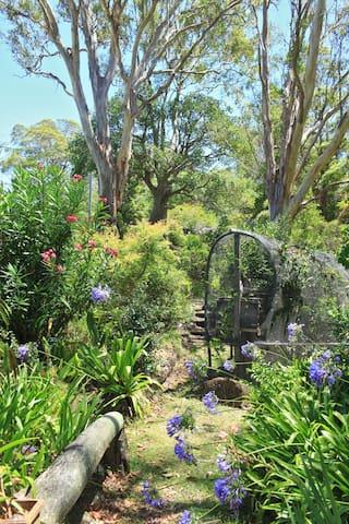 Bohemian Cottage  Opens Again! - Dulong