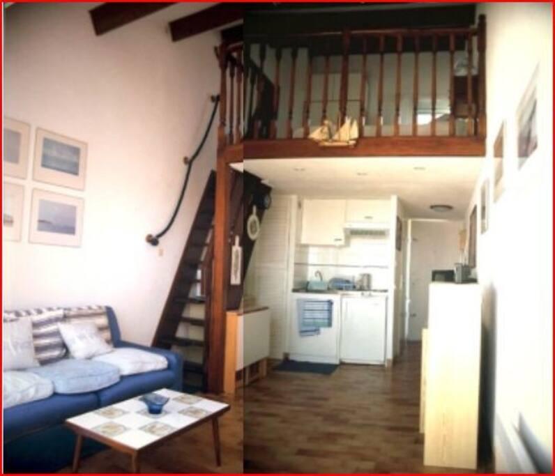 Il est composé d'un séjour comprenant un salon et une kitchenette, une salle de bain avec douche, d'une chambre en mezzanine et d'une terrasse.