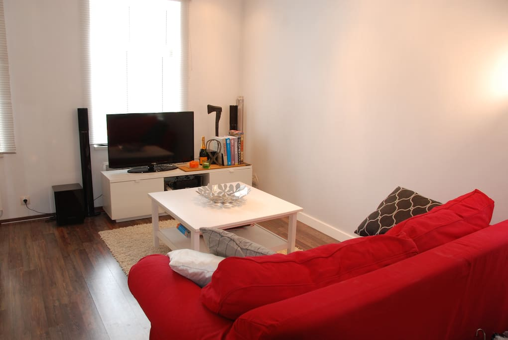 Living room and kitchen. Free Wifi and TV