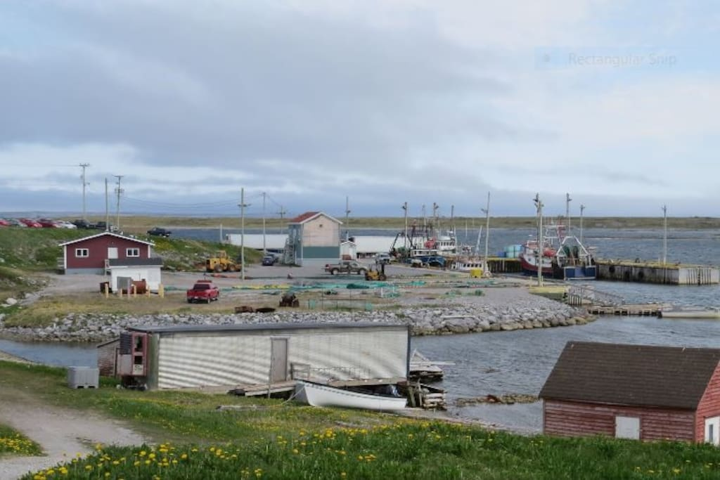 View of Fishing Wharf.