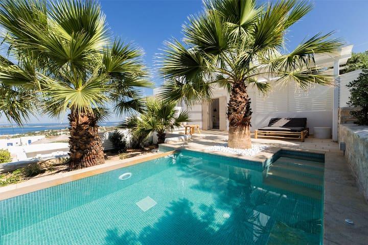 Anna Platanou Private Pool Exclusive Suite SeaView