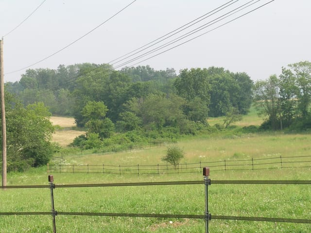 Horse pastures and farm field
