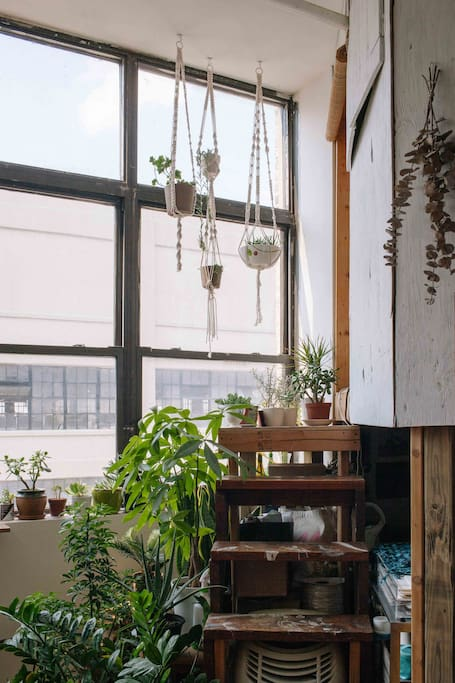Steps to the treehouse loft (this is your bedroom) and macrame plant hangers made by Lily.