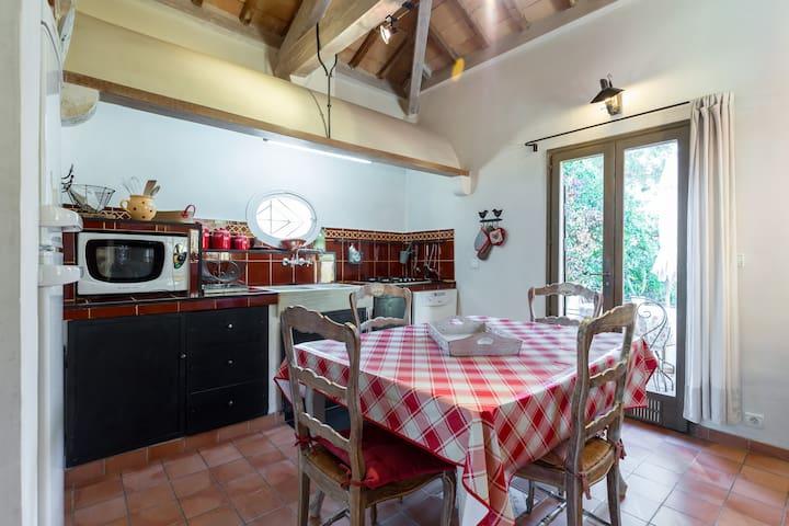 Grande cuisine aménagée dans un style provençal
