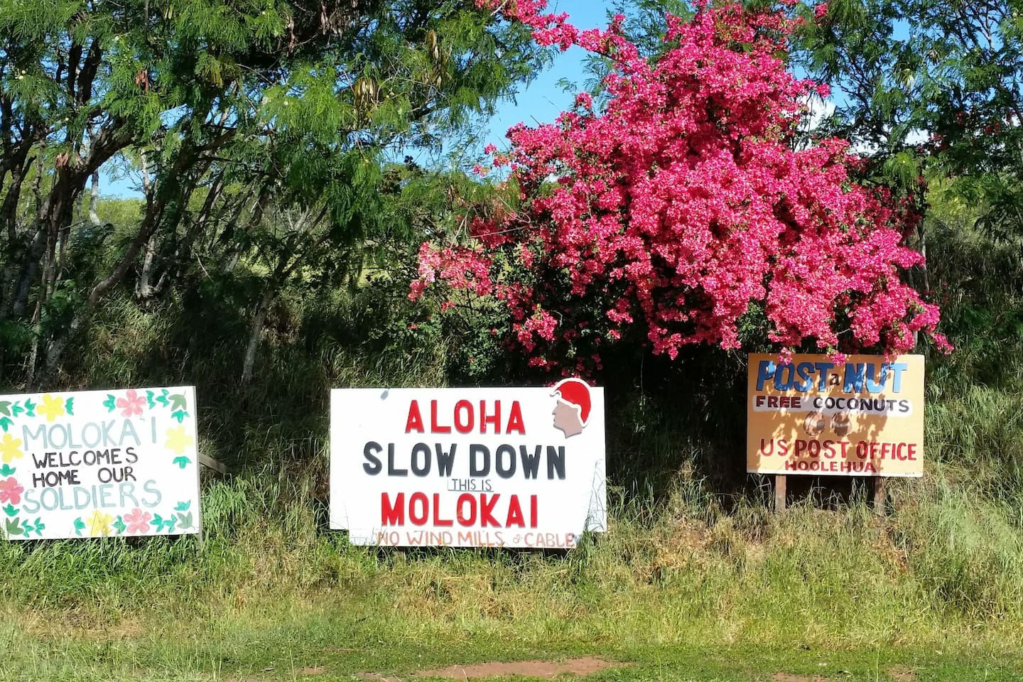 Essence of Molokai.   At exit from airport.