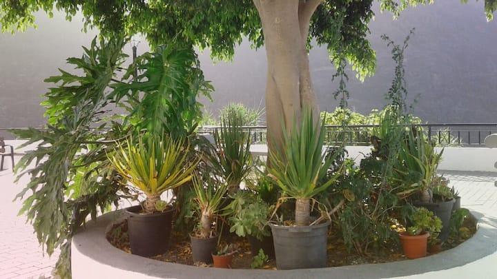 Refugio El Hornillo - Habitación Tagasaste