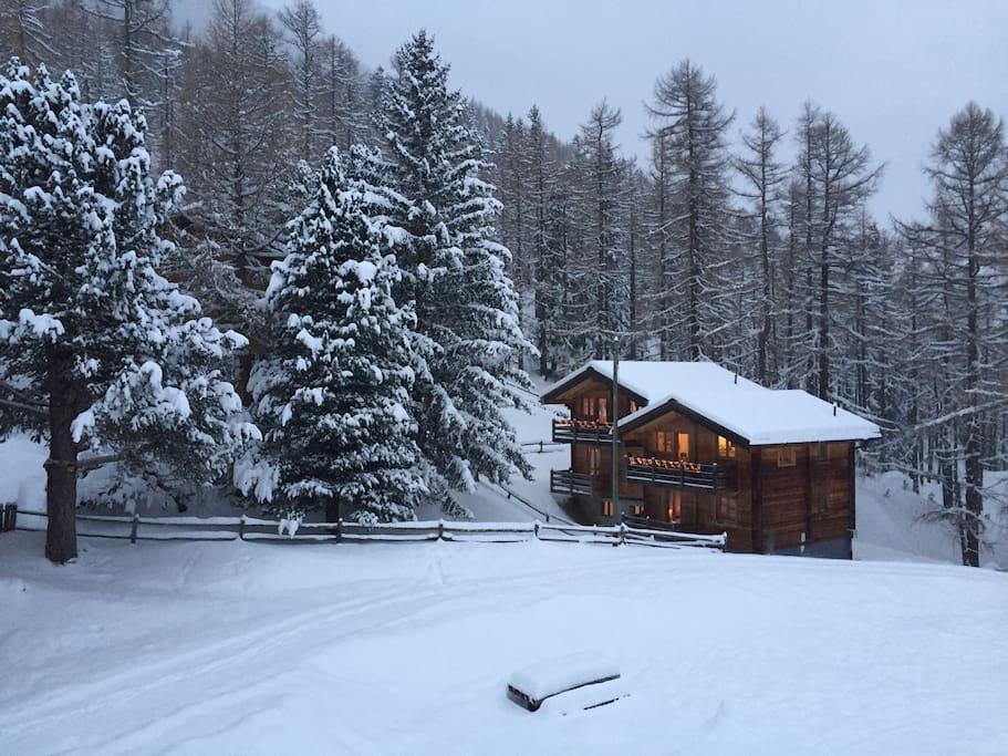 Last Christmas 2017! winter wonderland.