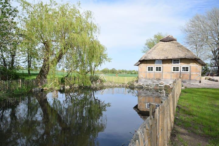Reetdachkate mit Sauna, 800 m von der Ostsee - Pommerby - House