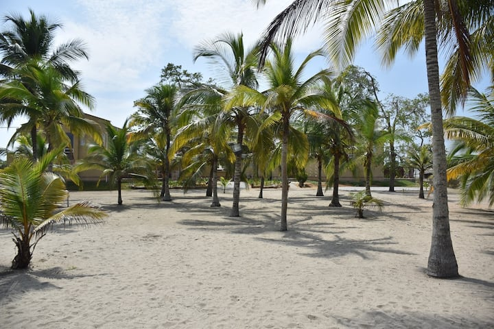 Coveñas Luxury  -  Ocean View
