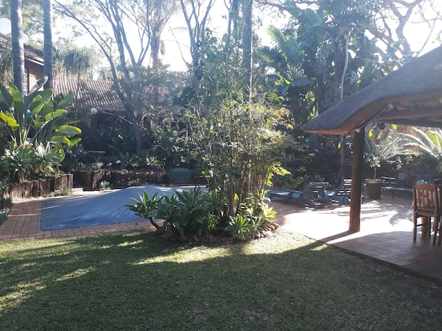 Cycad cottage 2
