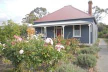 Enjoy the lovely rose garden