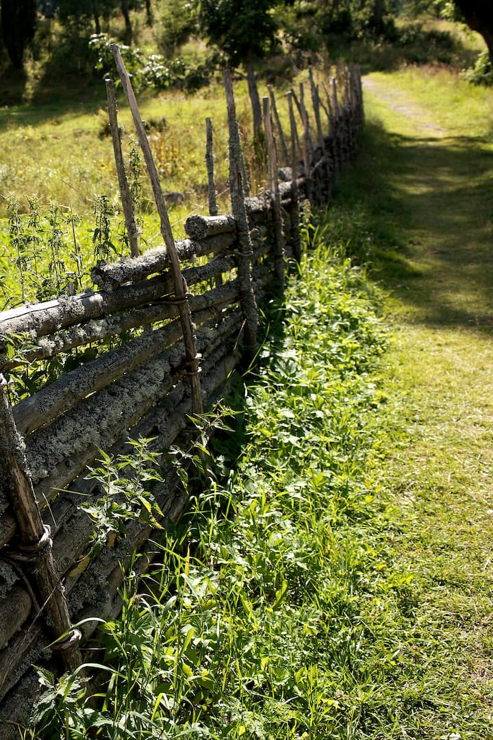 Swedish countryside: sustainable fences!