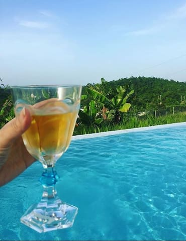 Here's to another beautiful day on Vieques!