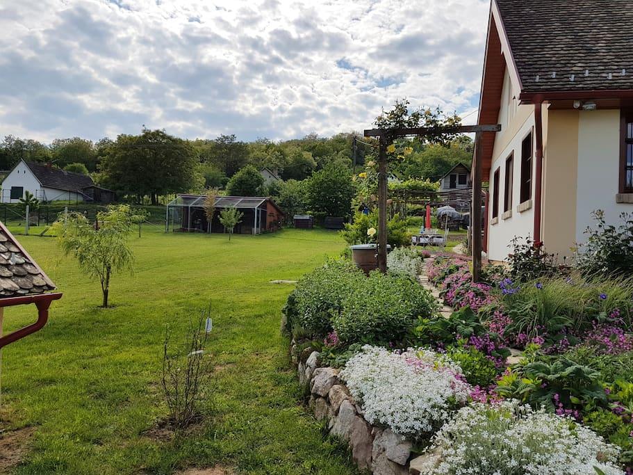Közel egy hektáros saját kert