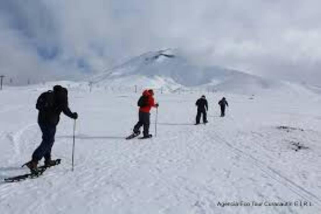 A 48 kms asfaltado de Centro invernal Corralco, Volcán Lonquimay. Termas, Parques Nacionales...