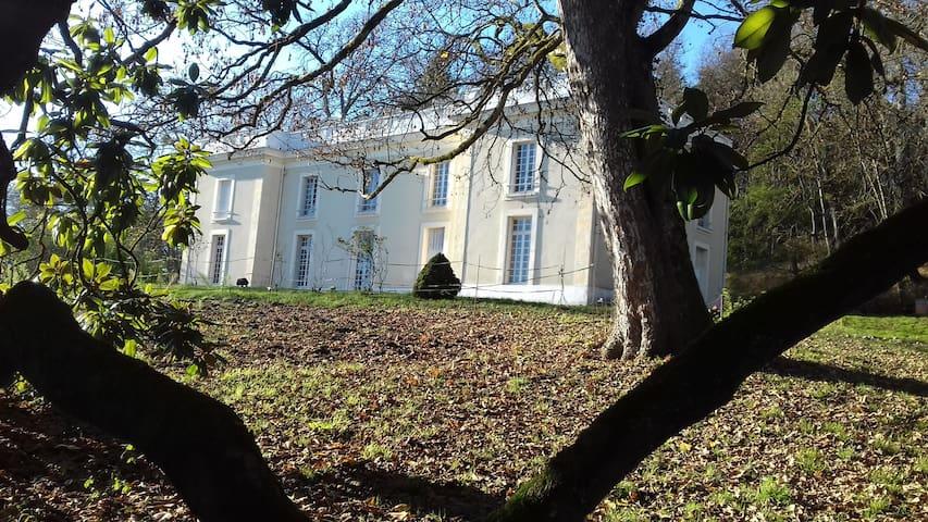 Château de Soulangy - Germigny sur Loire