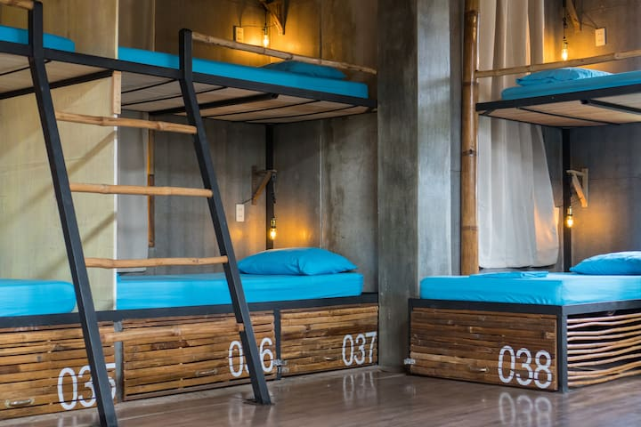 Comfortable Bunk Bed in 8-bed dormitory