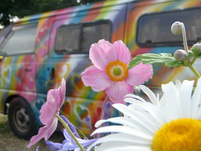 Colourful Campervan, fully equipped for Glamping - Cornwall - Trailer